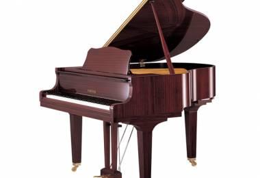 Học piano trên đàn Organ?